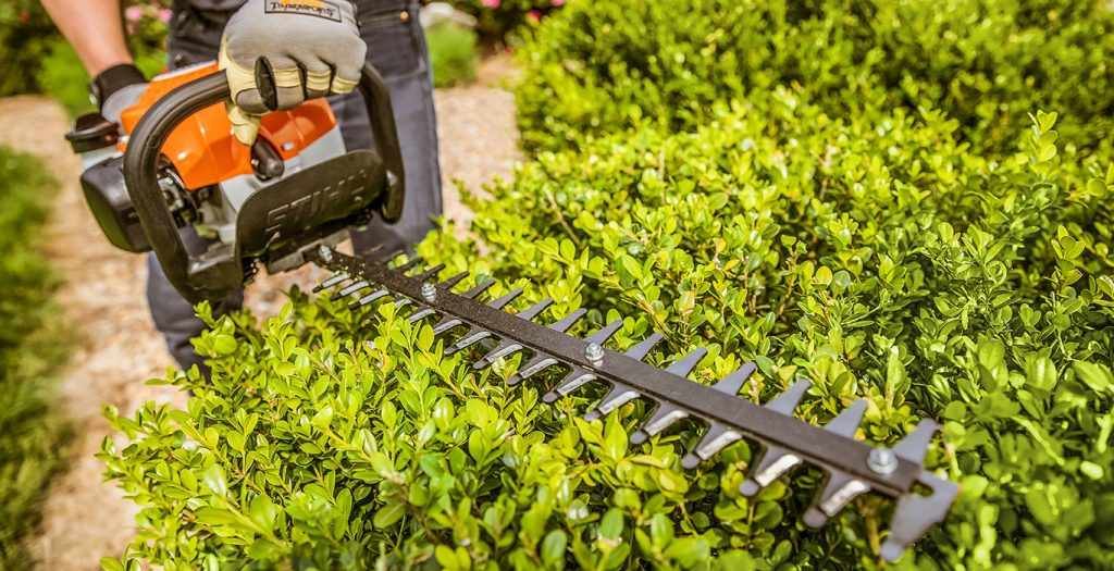 HEDGE TRIMMING 2
